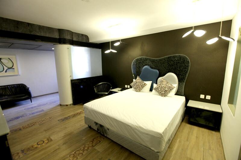 Luxury suite rooms - hummingbird hotel anand